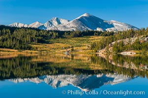 Mammoth Peak and alpine meadows in the High Sierra are reflected in Tioga Lake at sunrise. This spectacular location is just a short walk from the Tioga Pass road. Near Tuolumne Meadows and Yosemite National Park