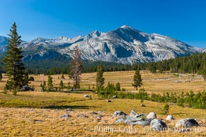 Mammoth Peak and alpine meadows in the High Sierra, viewed from the Tioga Pass road just west of the entrance to Yosemite National Park. Late summer