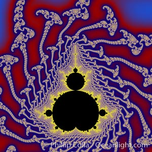 The Mandelbrot Fractal.  Fractals are complex geometric shapes that exhibit repeating patterns typified by self-similarity, or the tendency for the details of a shape to appear similar to the shape itself.  Often these shapes resemble patterns occurring naturally in the physical world, such as spiraling leaves, seemingly random coastlines, erosion and liquid waves.  Fractals are generated through surprisingly simple underlying mathematical expressions, producing subtle and surprising patterns.  The basic iterative expression for the Mandelbrot set is z = z-squared + c, operating in the complex (real, imaginary) number set, Mandelbrot set