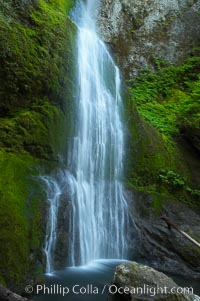 Marymere Falls drops 90 feet through an old-growth forest of Douglas firs, near Lake Crescent, Olympic National Park, Washington