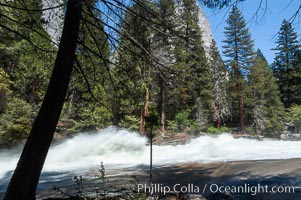 Merced River rapids at peak flow in late spring crashes through woods above Vernal Falls. Vernal Falls, Yosemite National Park, California, USA, natural history stock photograph, photo id 07146