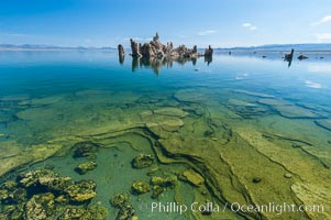 Tufa towers rise from Mono Lake.  Tufa towers are formed when underwater springs rich in calcium mix with lakewater rich in carbonates, forming calcium carbonate (limestone) structures below the surface of the lake.  The towers were eventually revealed when the water level in the lake was lowered starting in 1941.  South tufa grove, Navy Beach.,  Copyright Phillip Colla, image #09931, all rights reserved worldwide.