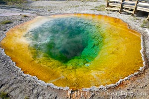 Morning Glory Pool has long been considered a must-see site in Yellowstone.  At one time a road brought visitors to its brink.  Over the years they threw coins, bottles and trash in the pool, reducing its flow and causing the red and orange bacteria to creep in from its edge, replacing the blue bacteria that thrive in the hotter water at the center of the pool.  The pool is now accessed only by a foot path.  Upper Geyser Basin, Yellowstone National Park, Wyoming