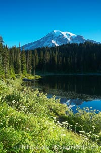 Mount Rainier, Reflection Lake, early morning, Mount Rainier National Park, Washington