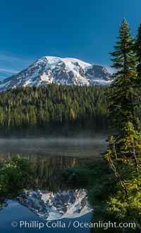 Mount Rainier is reflected in the calm waters of Reflection Lake, early morning. Reflection Lake, Mount Rainier National Park, Washington, USA, natural history stock photograph, photo id 28704