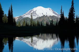Mount Rainier is reflected in Upper Tipsoo Lake, Tipsoo Lakes, Mount Rainier National Park, Washington