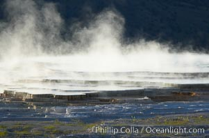 New Blue Spring steams in the cold morning air.  Mammoth Hot Springs, Yellowstone National Park, Wyoming
