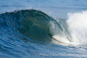 Breaking wave. The Wedge, Newport Beach, California