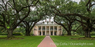 Oak Alley Plantation and its famous shaded tunnel of  300-year-old southern live oak trees (Quercus virginiana).  The plantation is now designated as a National Historic Landmark. Oak Alley Plantation, Vacherie, Louisiana, USA, natural history stock photograph, photo id 31004