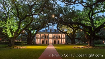 Oak Alley Plantation and its famous shaded tunnel of  300-year-old southern live oak trees (Quercus virginiana).  The plantation is now designated as a National Historic Landmark. Oak Alley Plantation, Vacherie, Louisiana, USA, natural history stock photograph, photo id 31012