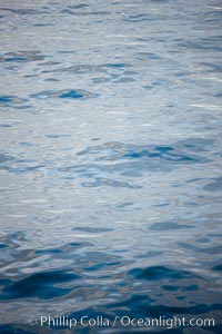 Ocean reflections at dawn, near Deception Island. Deception Island, Antarctic Peninsula, Antarctica, natural history stock photograph, photo id 25493