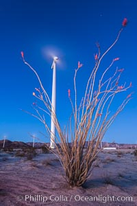 Ocotillo Express Wind Energy Projects, moving turbines lit by the rising sun,