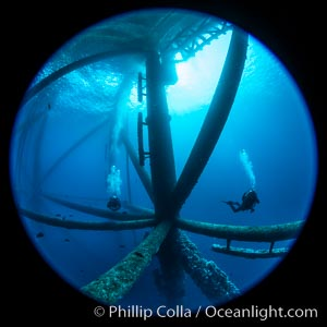 Oil Rig Ellen and Elly, Underwater Structure. Long Beach, California, USA, natural history stock photograph, photo id 34655