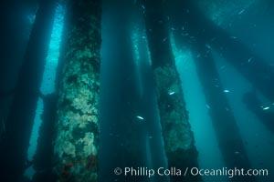 Oil Rig Eureka, Underwater Structure, Long Beach, California