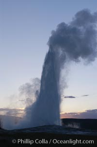 Old Faithful geyser at sunset. Upper Geyser Basin, Yellowstone National Park, Wyoming, USA