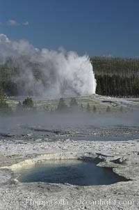 Old Faithful Geyser erupting, viewed from Geyser Hill with unidentified pool in foreground, Upper Geyser Basin, Yellowstone National Park, Wyoming