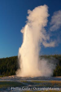 Old Faithful geyser at sunset, at peak eruption, Upper Geyser Basin, Yellowstone National Park, Wyoming