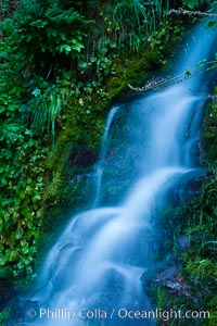 Small waterfall near The Chateau at Oregon Caves National Monument