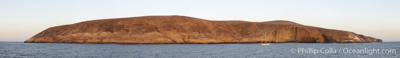 Panoramic photo of Santa Barbara Island, part of the Channel Islands National Marine Sanctuary.  Santa Barbara Island lies 38 miles offshore of the coast of California, near Los Angeles and San Pedro.  California sea lions inhabit the island in the thousands, and can be seen hauled out on the shore in this image