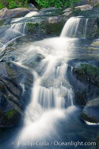 Paradise Falls tumble over rocks in Paradise Creek. Paradise Creek, Mount Rainier National Park, Washington, USA, natural history stock photograph, photo id 13869