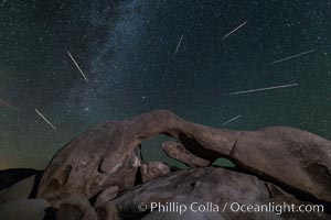 Perseid Meteor Shower over Arch Rock, Joshua Tree National Park, Aug 13, 2014. Arch Rock, Joshua Tree National Park, California, USA, natural history stock photograph, photo id 31144