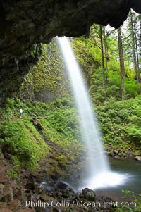 Ponytail Falls, where Horsetail Creeks drops 100 feet over an overhang below which hikers can walk, Columbia River Gorge National Scenic Area, Oregon