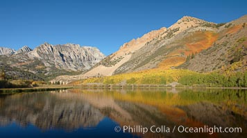 Aspen trees in fall, change in color to yellow, orange and red, reflected in the calm waters of North Lake, Paiute Peak rising to the right, Populus tremuloides, Bishop Creek Canyon, Sierra Nevada Mountains