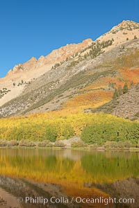 Paiute Peak, covered with changing aspen trees in autumn, rises above the calm reflecting waters of North Lake, Populus tremuloides, Bishop Creek Canyon, Sierra Nevada Mountains