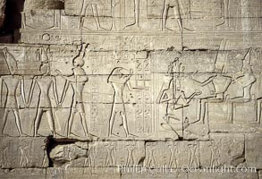 Wall detail, Ramesseum. Luxor, Egypt, natural history stock photograph, photo id 18475