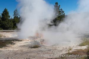 Red Spouter displaying as a fumarole, producing superheated steam.  At other times, Red Spouter may splash with mud or water.  Lower Geyser Basin, Yellowstone National Park, Wyoming