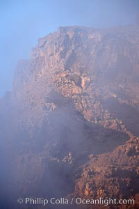 Red volcanic cliffs and fog, sunrise, Guadalupe Island, Guadalupe Island (Isla Guadalupe)