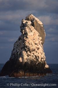Roca Partida, a small remote seamount in the Revillagigedos