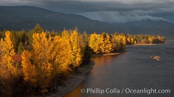Fall colors along Little Shuswap Lake, near the Adams River. Adams River, Roderick Haig-Brown Provincial Park, British Columbia, Canada, natural history stock photograph, photo id 26186