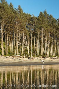 A couple walks along Ruby Beach at sunset, Olympic National Park, Washington