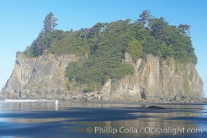 A visitor walks along Ruby Beach at low tide, dwarfed by its famous seastack, early morning, Olympic National Park, Washington