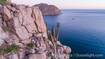 Rugged coastline on Isla Espiritu Santo, aerial view, Cardon Cactus, Sea of Cortez