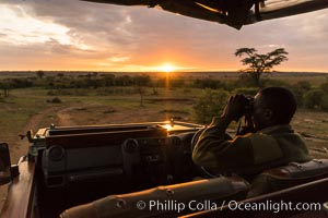 Safari guide spotting wildlife at sunrise, Olare Orok Conservancy, Kenya
