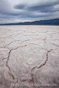 Salt polygons.  After winter flooding, the salt on the Badwater Basin playa dries into geometric polygonal shapes, Death Valley National Park, California