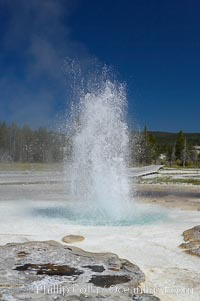 Sawmill Geyser erupting.  Sawmill Geyser is a fountain-type geyser and, in some circumstances, can be erupting about one-third of the time up to heights of 35 feet.  Upper Geyser Basin, Yellowstone National Park, Wyoming