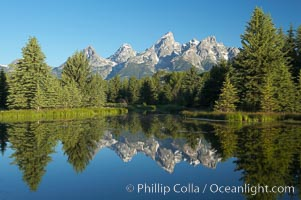 The Teton Range is reflected in the glassy waters of the Snake River at Schwabacher Landing.,  Copyright Phillip Colla, image #12986, all rights reserved worldwide.