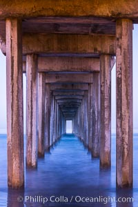 Scripps Pier and moving water, pre-dawn light, La Jolla. La Jolla, California, USA, natural history stock photograph, photo id 28986