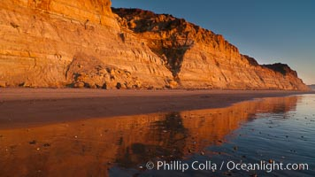 Torrey Pines bluffs, sea cliffs that rise above the Pacific Ocean, extending south towards Black's Beach and La Jolla, Torrey Pines State Reserve, San Diego, California