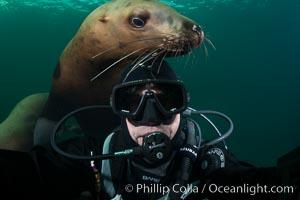 Selfie with Steller sea lion underwater, Norris Rocks, Hornby Island, British Columbia, Canada, Eumetopias jubatus