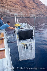 Lowering a shark cage into the water alongside M/V Horizon.  Large, strong aluminum cages protect divers while they are in the water viewing sharks, Guadalupe Island (Isla Guadalupe)