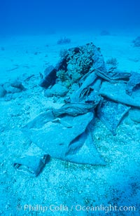 Debris from wreck of F/V Jin Shiang Fa, lagoon floor, Rose Atoll National Wildlife Sanctuary