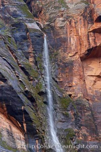 A tiny ephemeral waterfall in Zion Canyon near Weeping Rock, hardly more than a trickle, lasted for a short while following spring rains.  Zion Canyon, Zion National Park, Utah