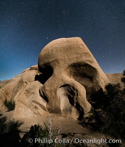 Skull Rock and stars at night, Joshua Tree National Park, California