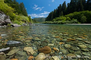 Smith River, the last major free flowing river in California.  Trees include the coast redwood, western hemlock, Sitka spruce, grand fir and Douglas fir, Jedediah Smith State Park