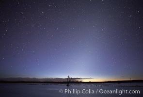 Stars appear in the dark predawn sky.  Stars appear in pre-dawn light at the main impoundment pond, Bosque del Apache National Wildlife Refuge.  A group of snow geese can be seen resting on the water, Chen caerulescens, Socorro, New Mexico