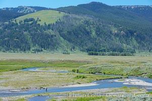 Flyfishermen fish along Soda Butte Creek near the Lamar Valley, Yellowstone National Park, Wyoming